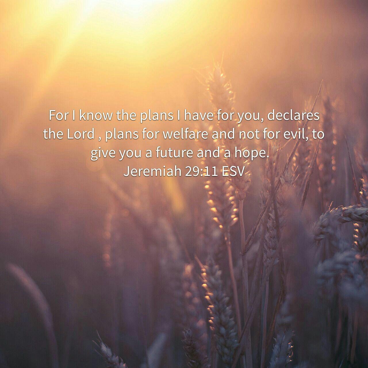 Pin by amanda toye on inspiration daily bible verse