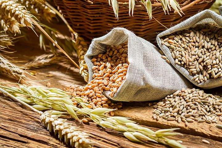 growing naturals grains are they good or bad for you gf grains flours meals mixes pinterest phytic acid rice and meals