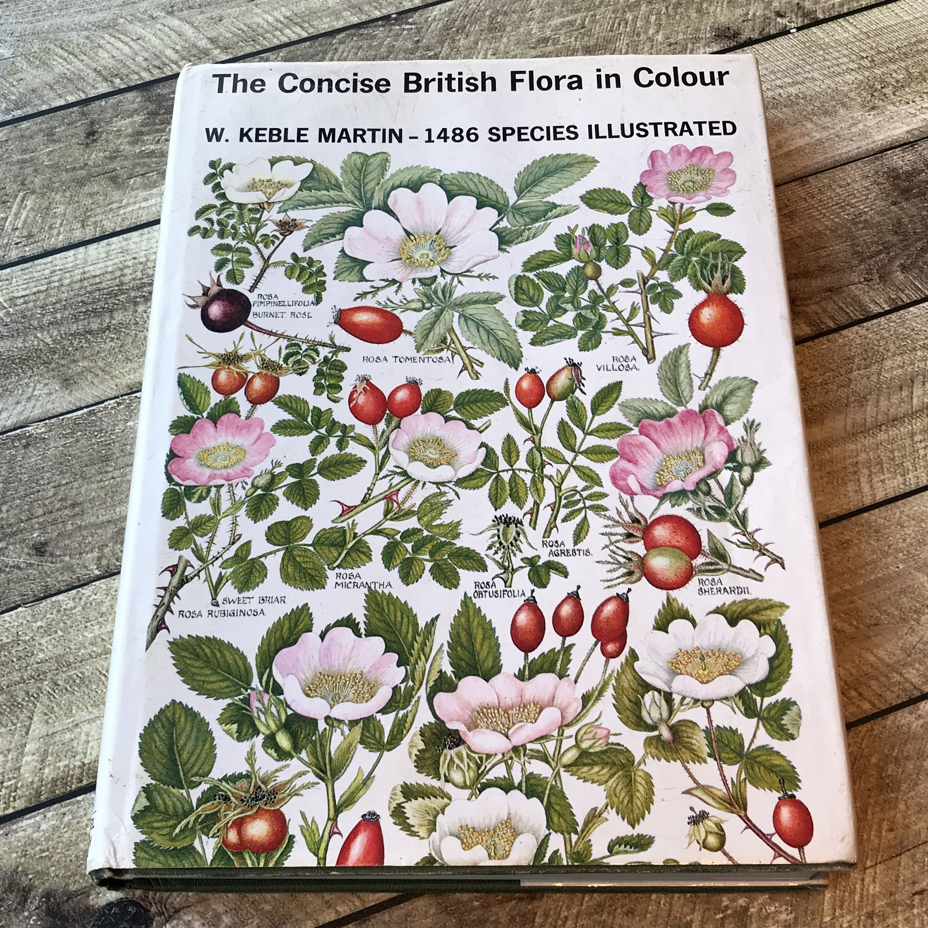 Concise British Flora In Colour Beautiful Vintage Book With 100