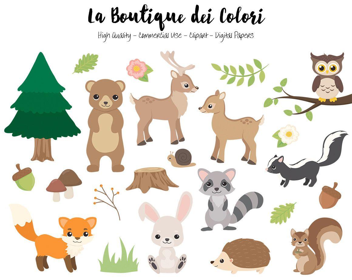 Woodland Animals Clipart La Boutique Dei Colori Animal
