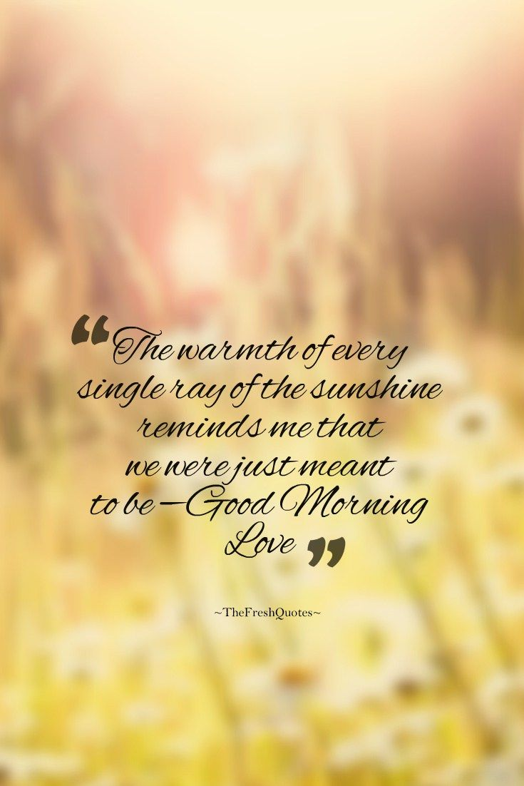 Morning Love Quotes Cute & Romantic Good Morning Wishes Images  Pinterest  Romantic