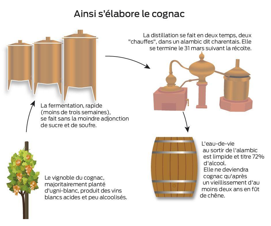 How To Make Cognac Distillation Cognac Spiritueux Eau De Vie