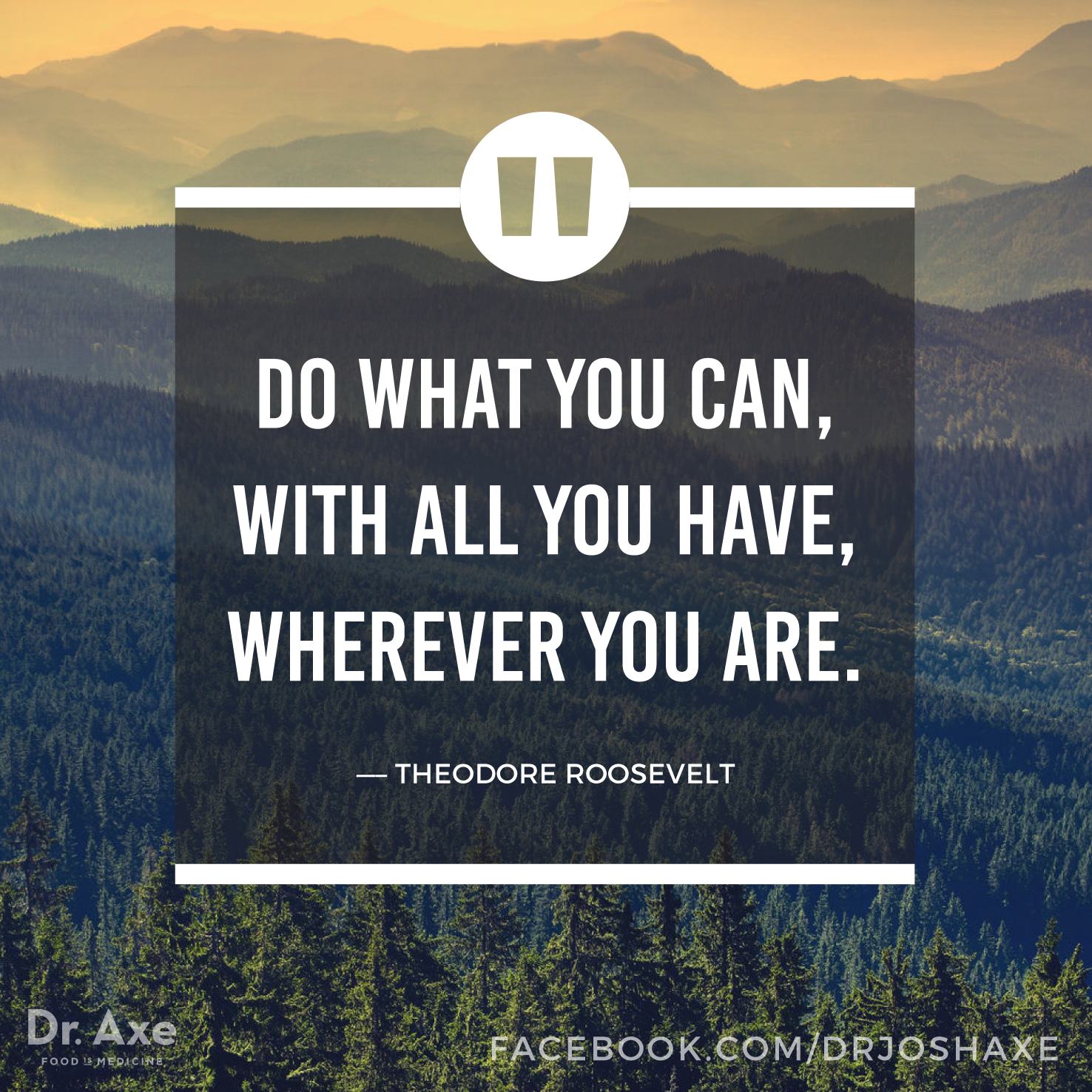Do What You Can, With All You Have, Wherever You Are.