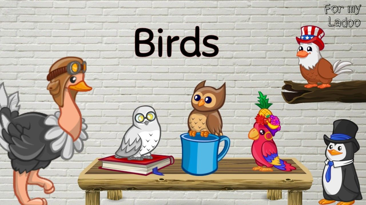 Learn birds name for kids | Simple learning videos for babies