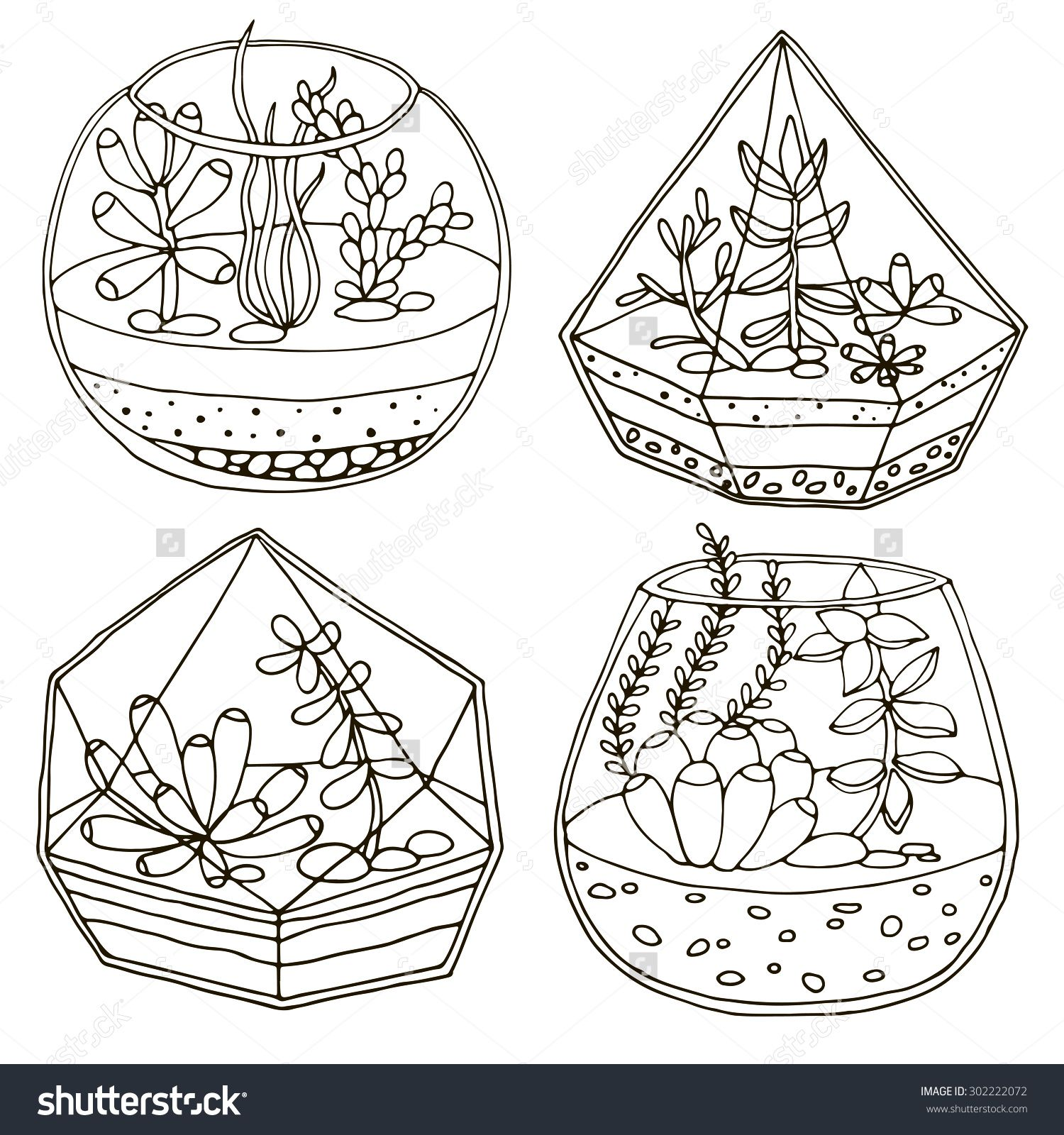 Hand Drawn Terrarium With Succulent Plant Pattern Coloring Pages