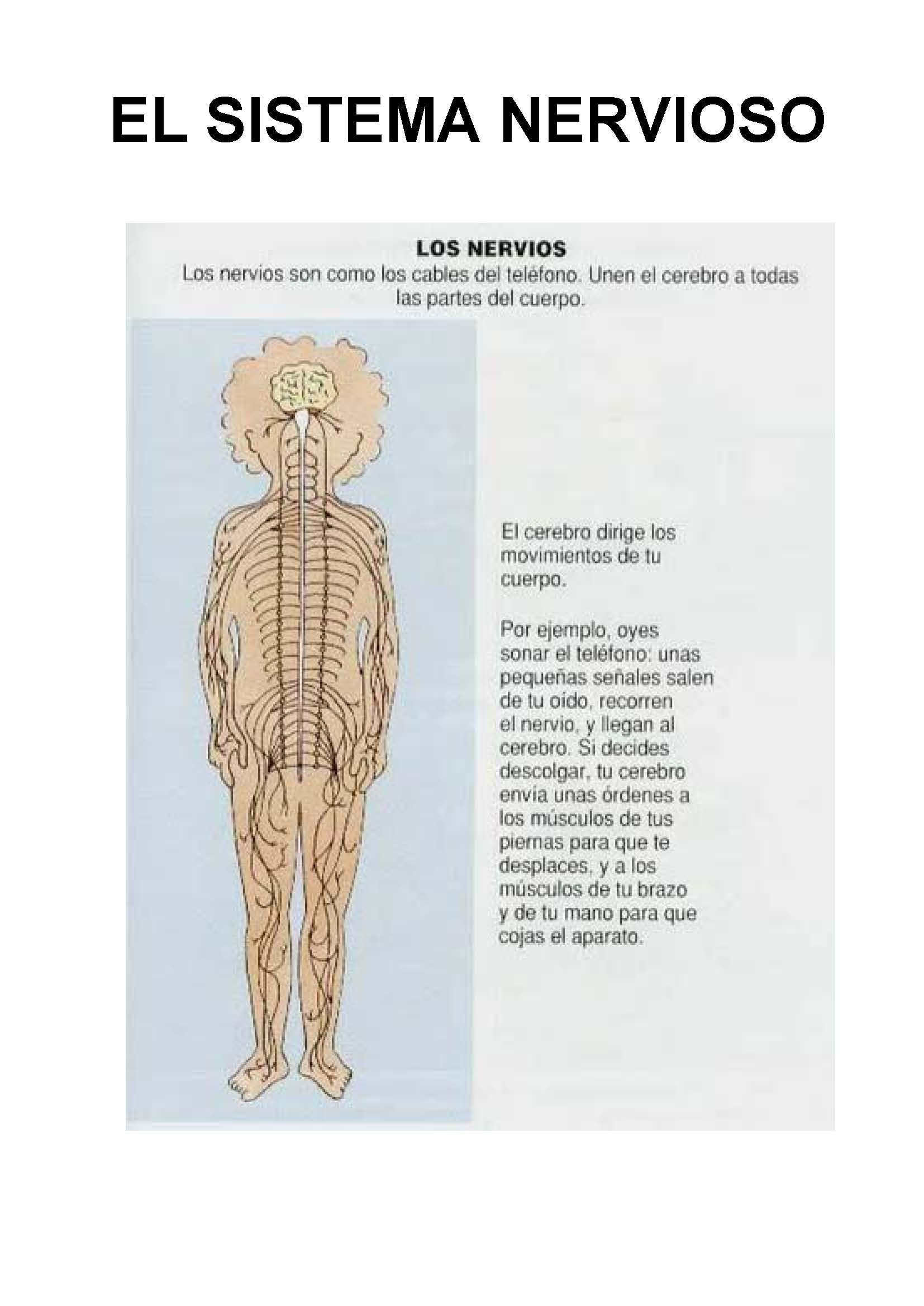 Libro El Cuerpo 091 724x