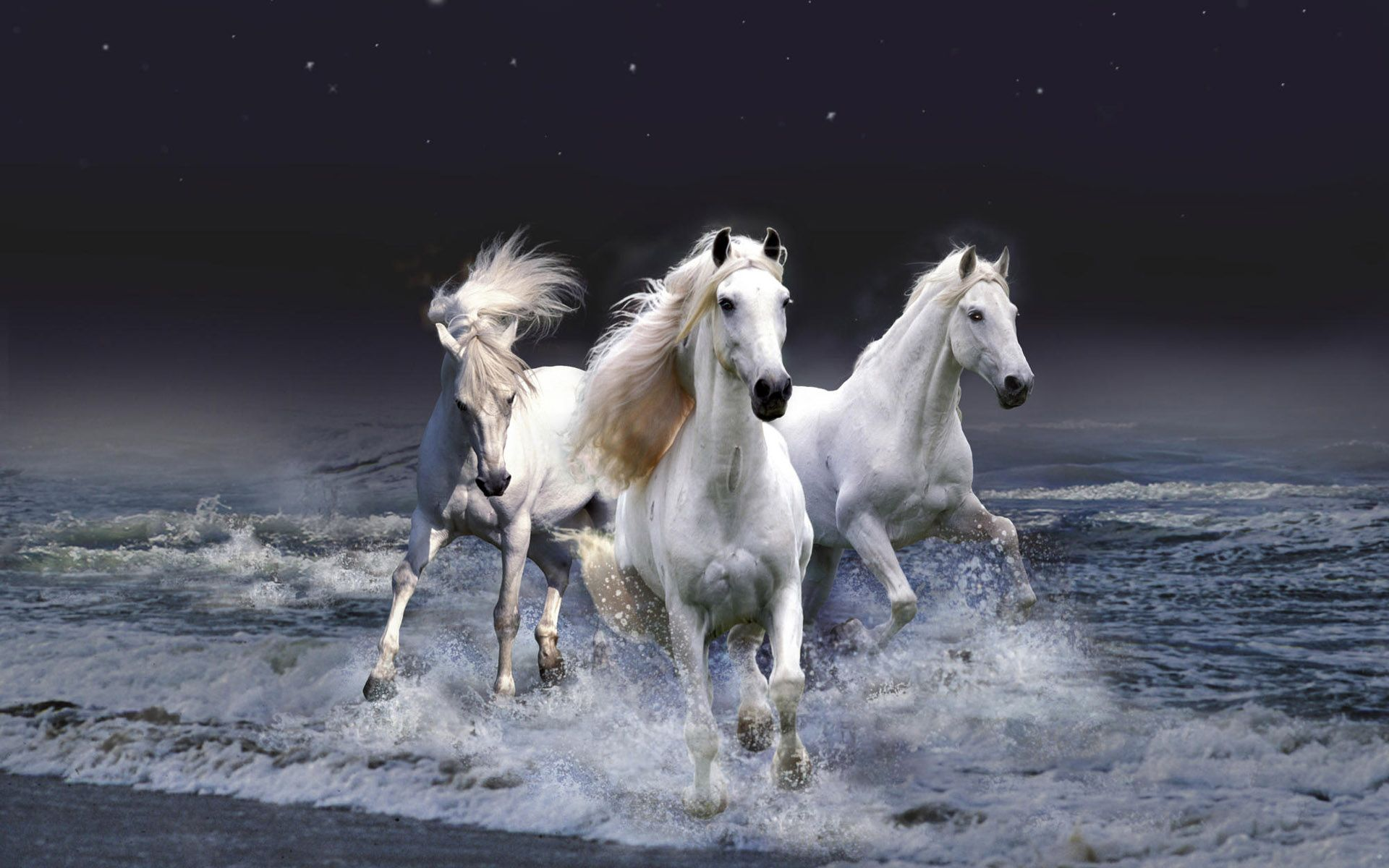 Download Wallpaper Horse Desert - 9869d6273b027318d53f233fec48bf6a  Graphic_494645.jpg