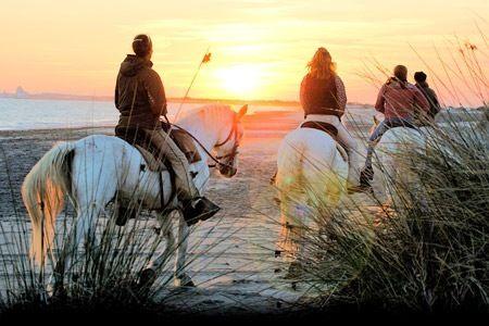 Balade à cheval au bord de l eau en Camargue   Wish List Sport ... 7e9005e0d86