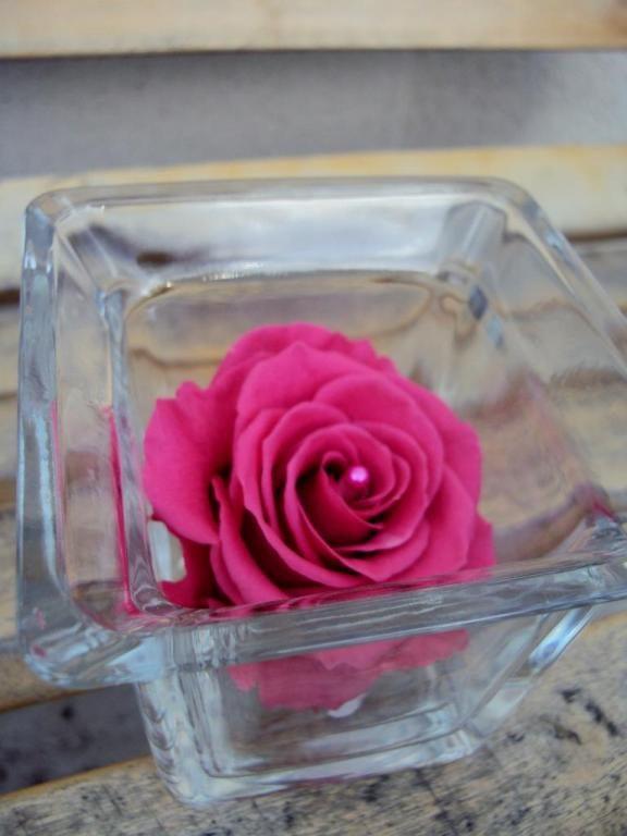 VASE cube ROSE fuchsia et PERLE fleur naturelle éternelle stabilisée