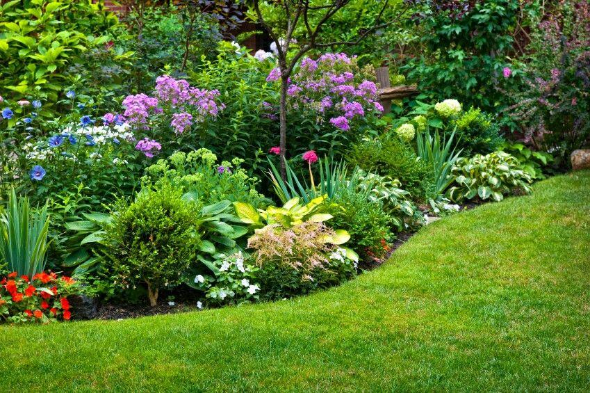 Hermoso cantero de arbustos Arbustos Pinterest