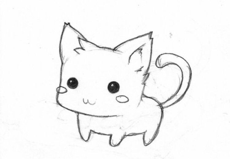 Like To Learn How To Draw This Kitten Drawing Animal Drawings