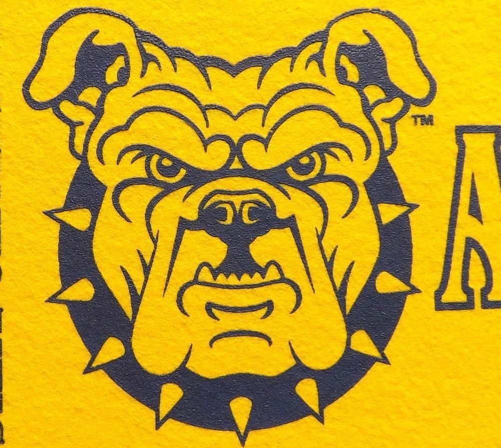 N C A T State University Pennant Greensboro North Carolina Aggies