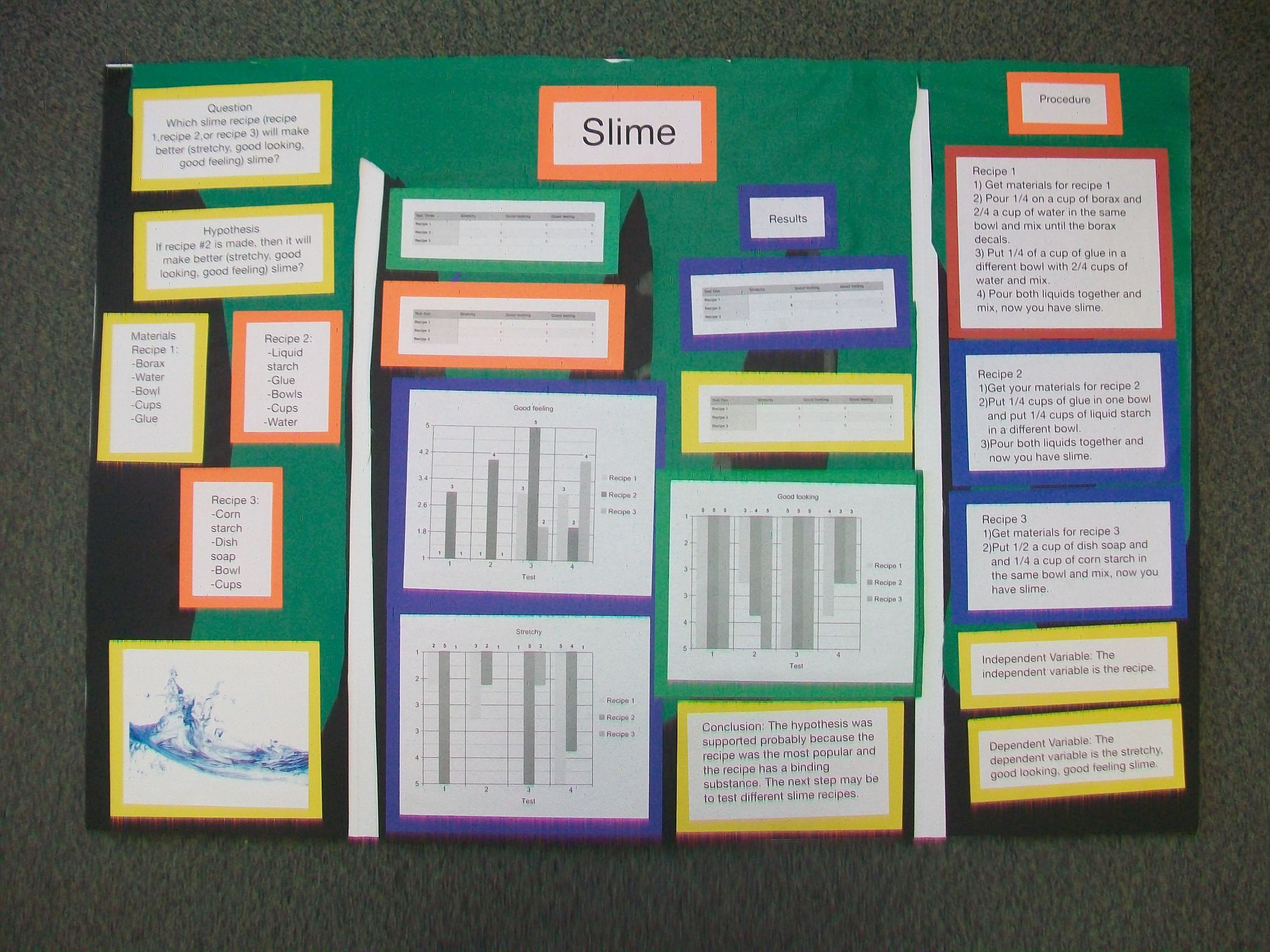 Science Fair Mr Difiores Class