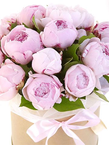 15 розовых пионов в шляпной коробке | Розовые пионы, Пионы ...