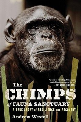 The Chimps Of Fauna Sanctuary A True Story Of Resilience And Recovery By Andrew Westoll True Stories Nonfiction Chimp
