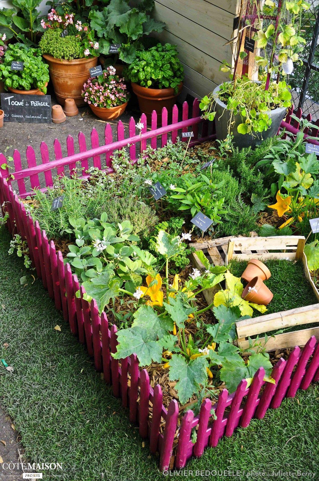 Un Mini Potager Protege Par Des Barriere Roses Parfait Pour Y Mettre Ses Plantes Aromatiques Potager Jardin Potager Et Mini Potager