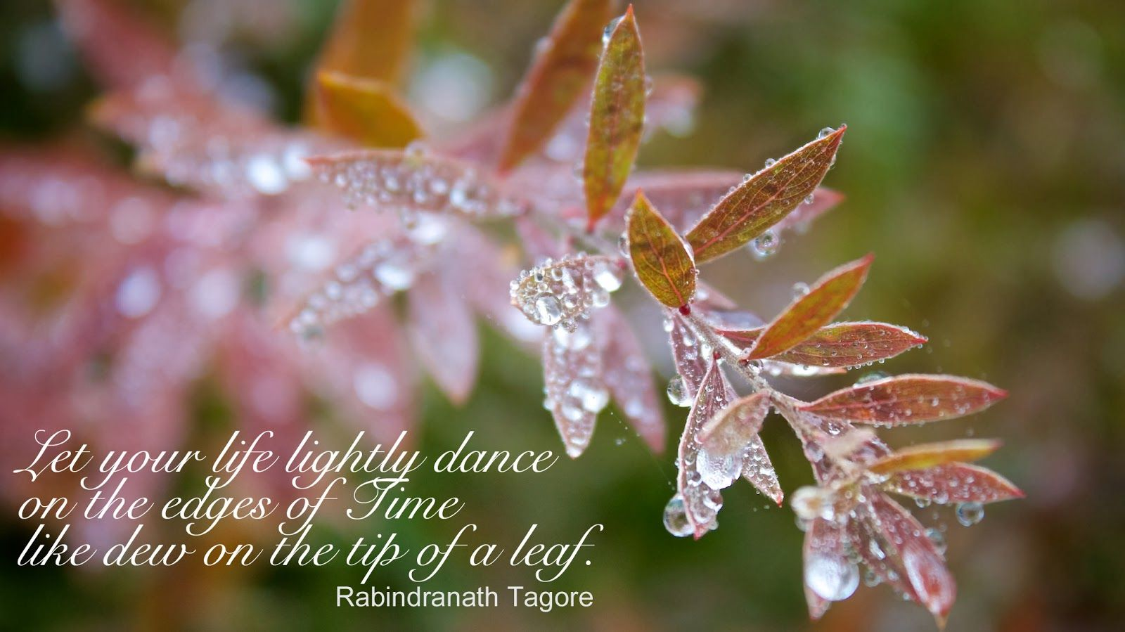Morning Dew: Inspirational Poems