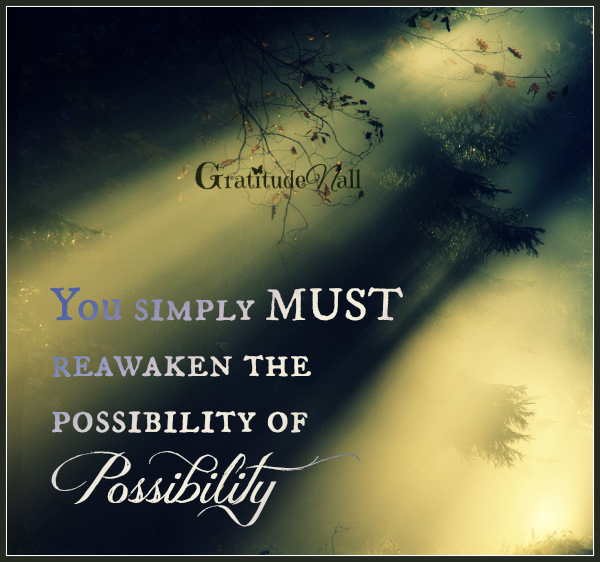 You simply MUST reawaken the possibility of possibility  ~Kristin Louise Granger