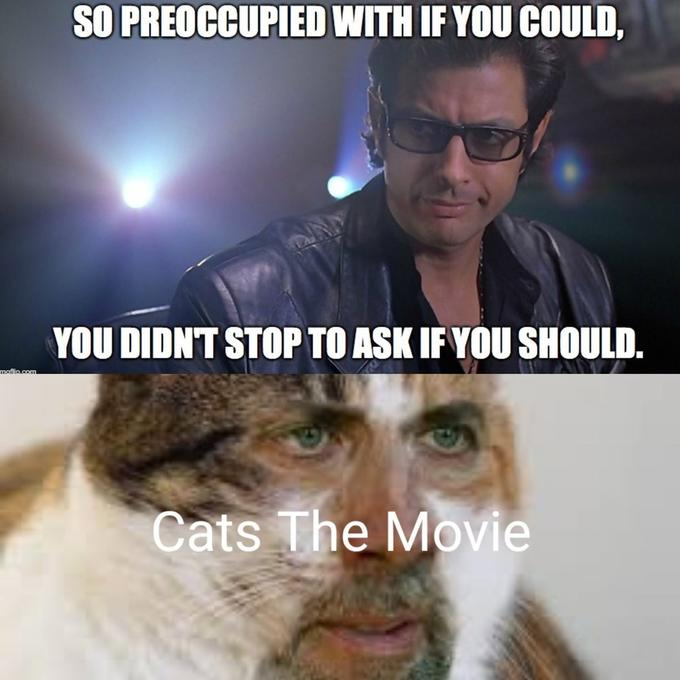 You Shouldn T Cats 2019 Film Movie Memes Film Know Your Meme