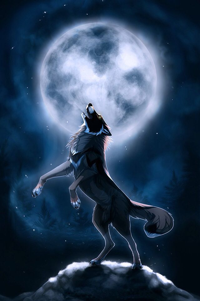 Moon Male Hunter No Mate Strong Loving Brother To Icewind And