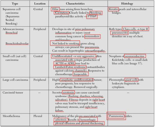 MLK USMLE Step1 Respiratory Flashcards Quizlet