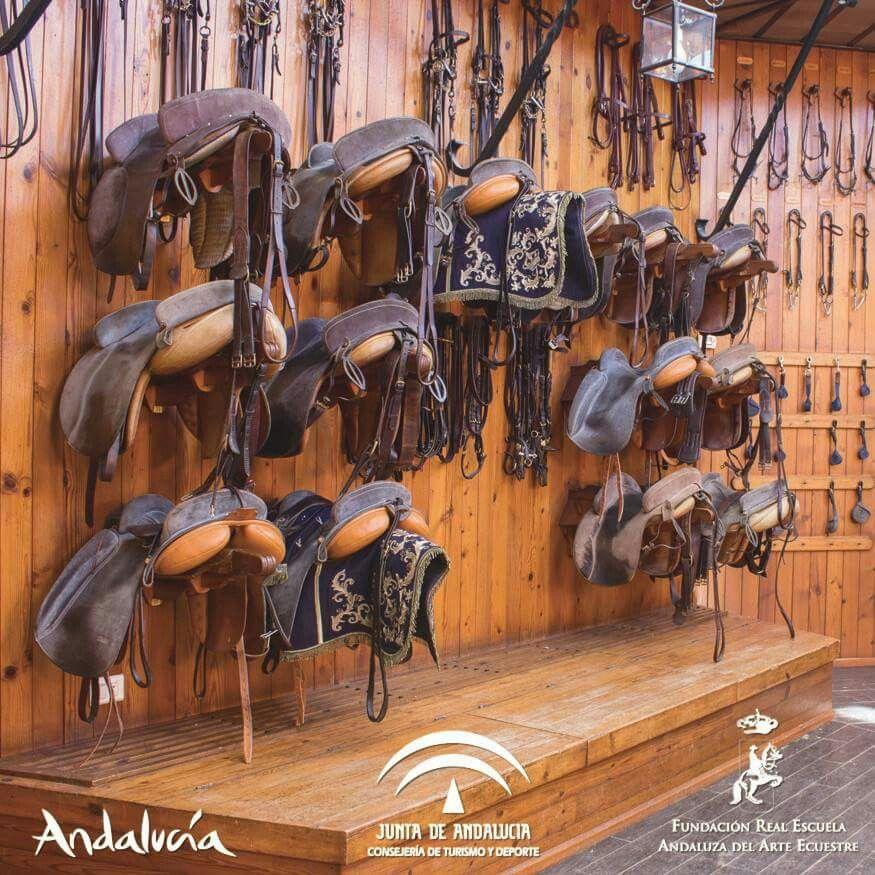 Real Escuela Andaluza De Arte Ecuestre Paarden Spaans