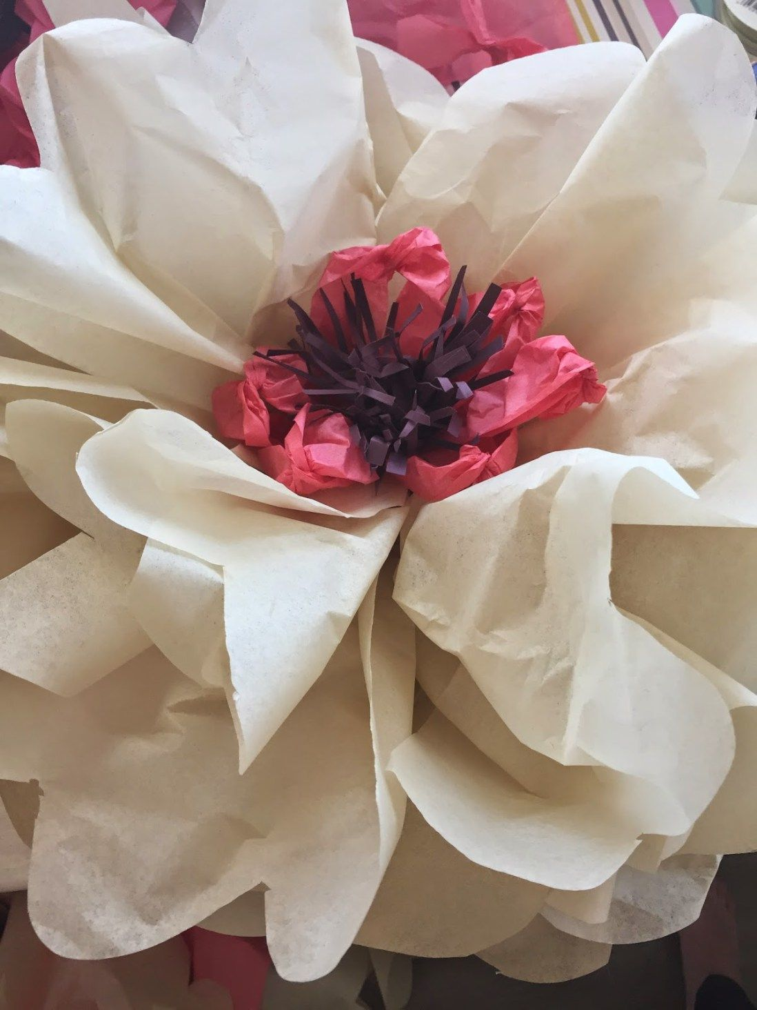 How To Make Giant Tissue Paper Flowers Graduation Pinterest
