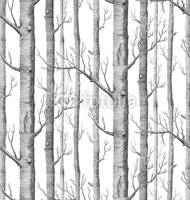 birch tree removable wall decal