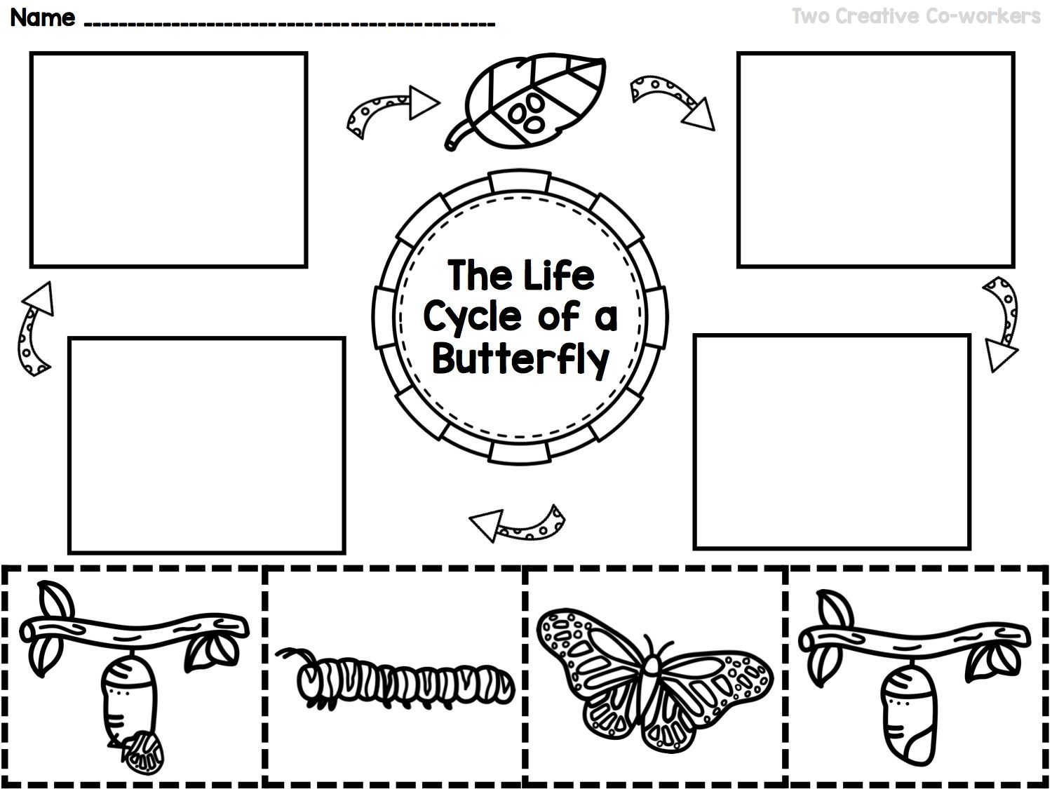 worksheet Life Cycle Worksheets Ks2 the life cycle of a butterfly printable mini book worksheets cards