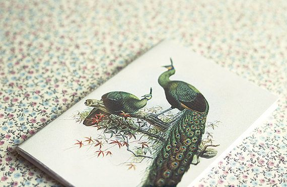 Vintage Peacock Illustration Notebook