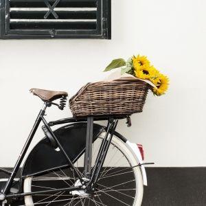 Basil Cento Rattan Rear Basket Cyclin Style Pinterest Rattan