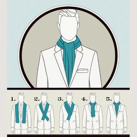 лабрадоров были способы завязывания шарфов для мужчин в картинках необходимо нужного