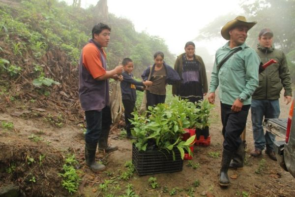 Jose Perez Vazquez & other farmers getting ready to plant coffee saplings, Jan 2013.     http://www.highergroundstrading.com/12/mexico#