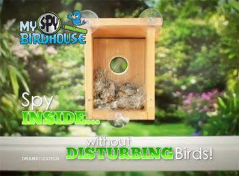 About My Spy Birdhouse TV Spot