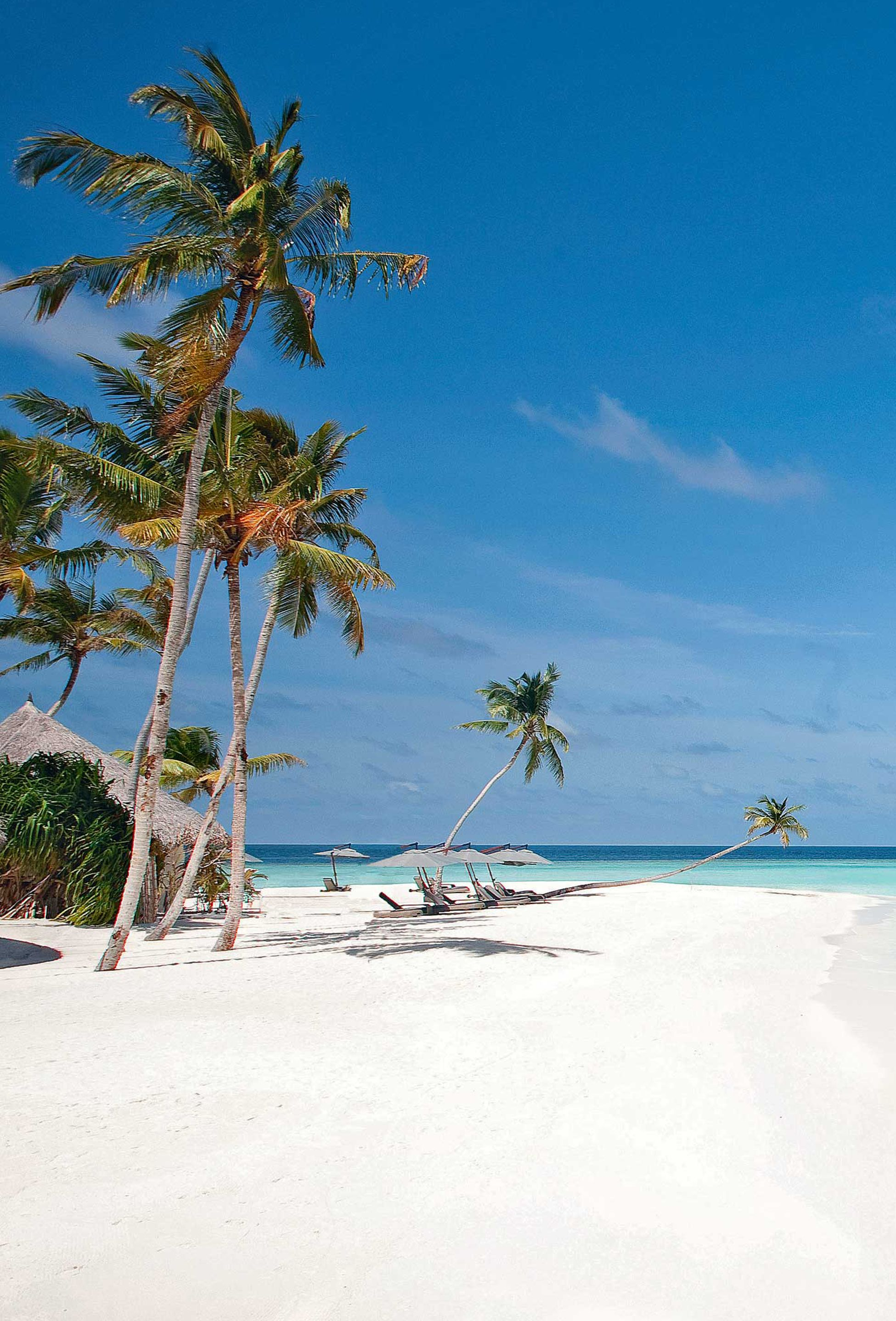 You can't go wrong in Maldives