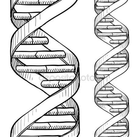Download Seamless Dna Double Helix Pattern Stock Illustration 18320129 Dna Drawing Dna Artwork Dna Tattoo