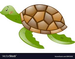 Vector Turtle Shell Google Search Turtle Shell Turtle Vector