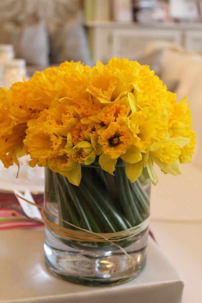 Daffodils In Dld Illusion Vase Debi Lilly Design For