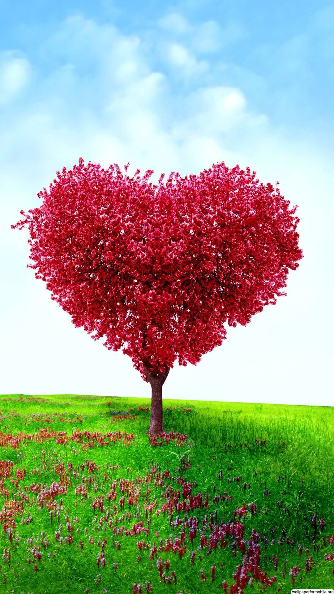 Http Wallpaperformobile Org 7794 Valentines Wallpaper Free Download Html Valentines Wallpap With Images Valentines Wallpaper Hd Wallpaper Android Tree Canopy Wallpaper