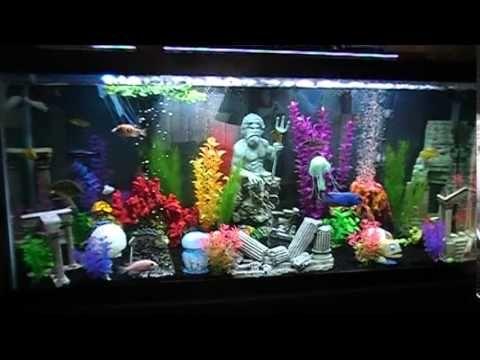Atlantis Fish Tank With Images Fish Tank Aquarium Decorations