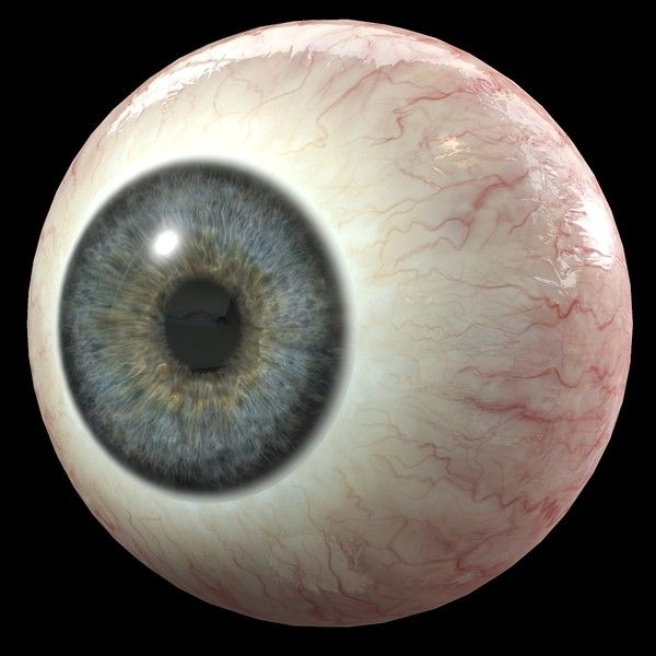 eye human iris 3d model - Eye by Komba3d | 3d models | Pinterest ...