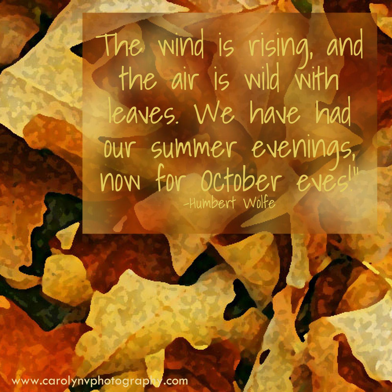 Superbe Beautiful Autumn Quote