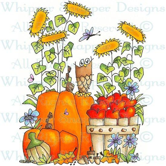 Fall Harvest - Fall - Seasons -