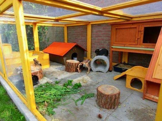 Gartengehege bauen Kaninchengehege, Kaninchen spielplatz