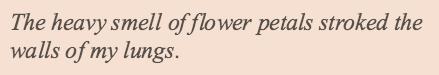 "ma-demoiselle-cherie: "" Haruki Murakami, The Wind-Up Bird Chronicle """