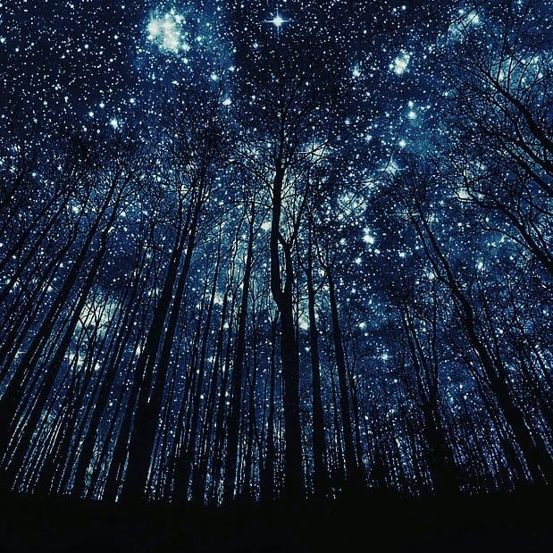 Grumpybunny Instagood Instalike Amazing Cool Photography Thebest Nature Beautiful Badass Sky Stars Nightsky Love