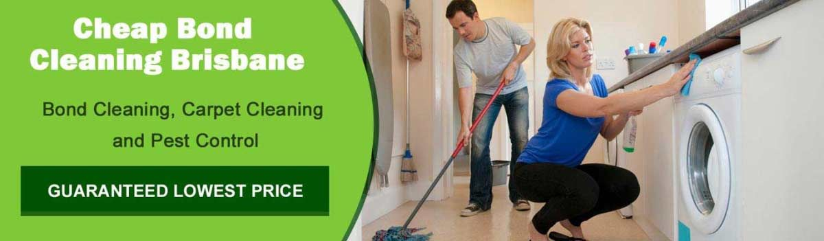 We Are The Best Choice For Bond Cleaning Carpet Cleaning And Pest Control Services In Brisbane City Book Our End Of Lea How To Clean Carpet Brisbane Cleaning