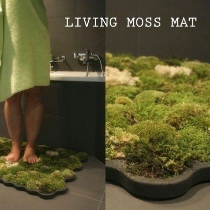 Living Moss Mat Where Can I Get This With Images Green