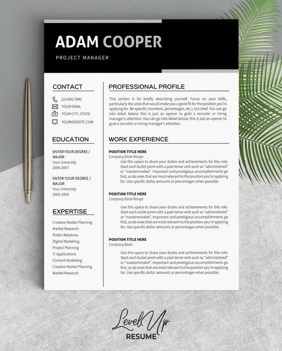 Professional resume writing service michigan