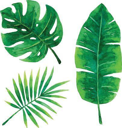 vector illustration of tropical plants leaf diy art watercolor